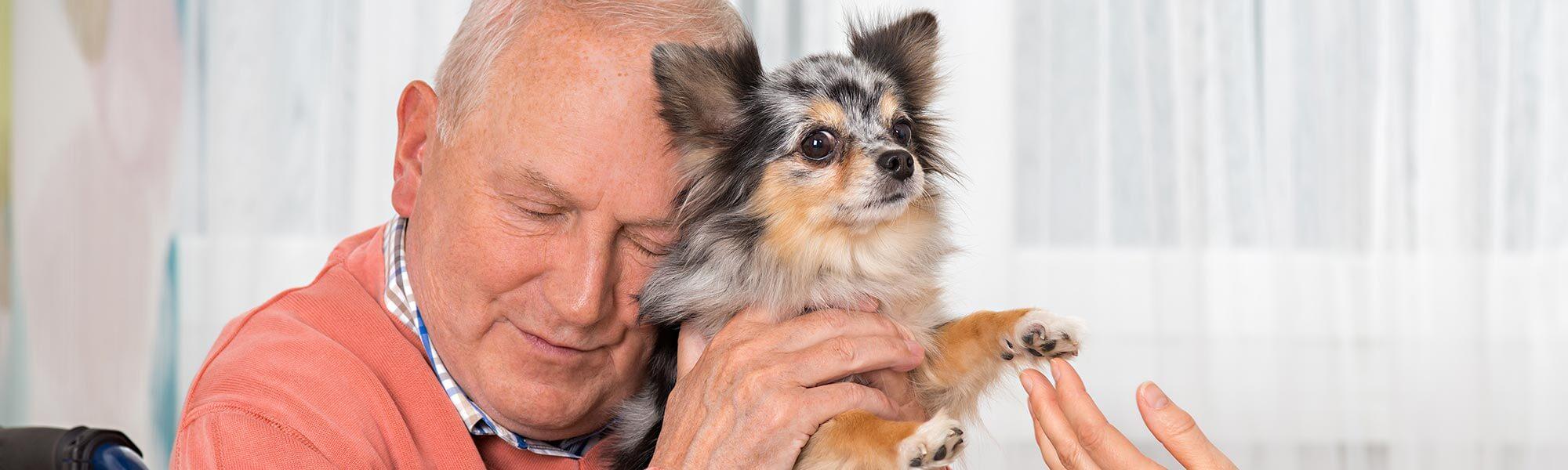 Terapihund og ældre mand